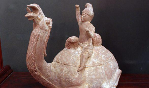 Cammello Bactriano - Bactrian Camel